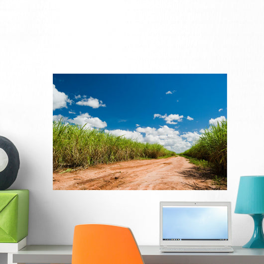 Road for the Sugar Cane Field Wall Mural