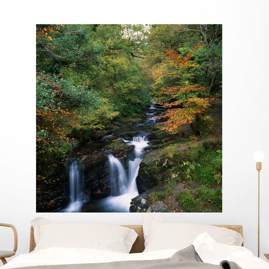 Torc Waterfall, Ireland,Co Kerry Wall Mural