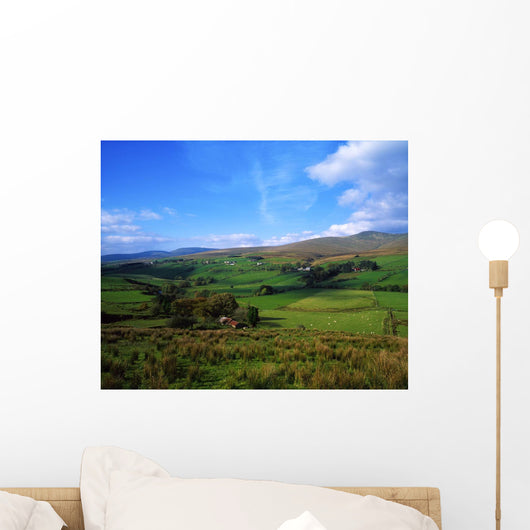 Sperrin Mountains, Co Tyrone, Ireland Wall Mural