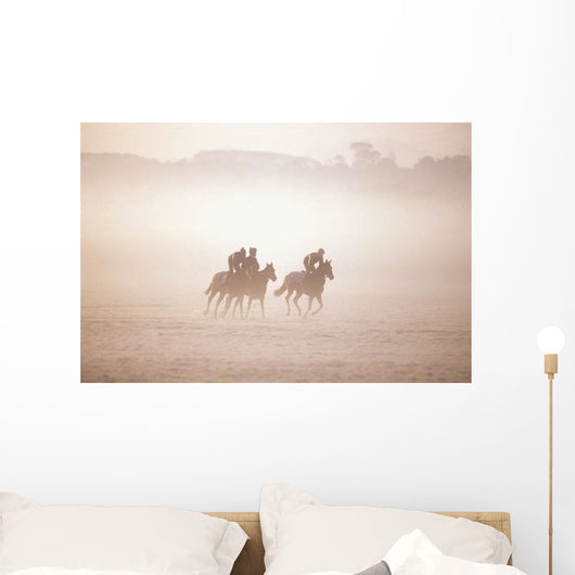Thoroughbred Horses In Training, Curragh, Co Kildare, Ireland Wall Mural