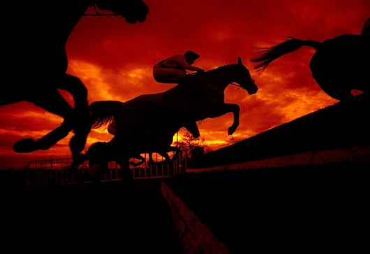 National Hunt, Ireland Wall Mural