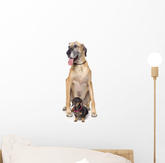 Great Dane And Dachshund Portrait Wall Decal