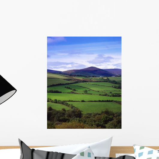 Fields From The Sugar Loaf Mountain, Co Wicklow, Ireland Wall Mural