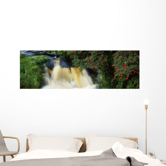 Waterfall And Fuschia, Ireland Wall Mural