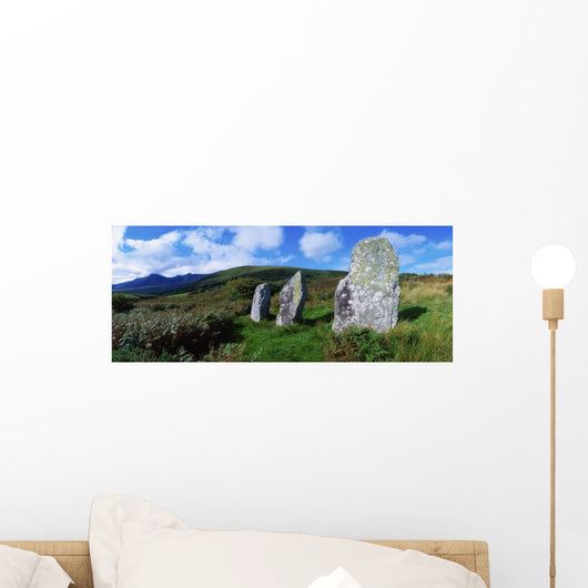 Standing Stone Alignment Wall Mural