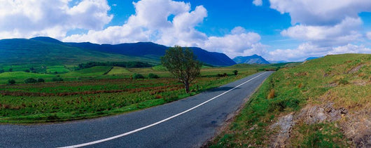 Road From Westport To Leenane, Co Mayo, Ireland Wall Mural