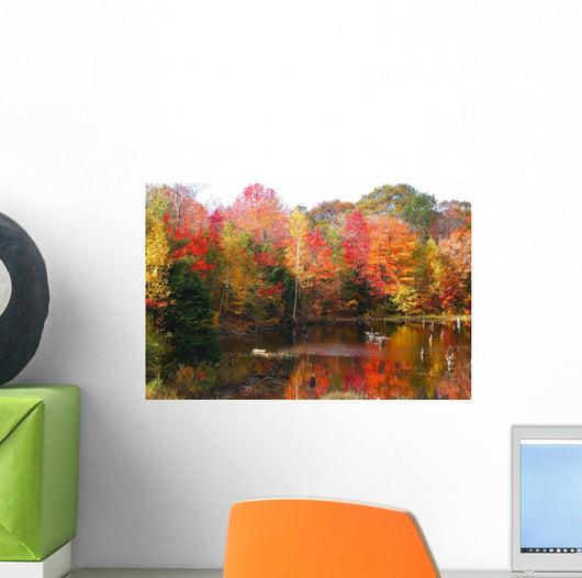 Northern Ontario Fall Color Wall Mural