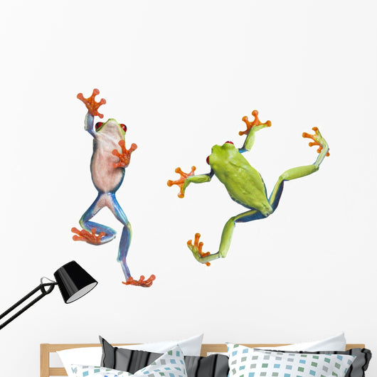 Two Red Eyed Tree Frogs Wall Decal