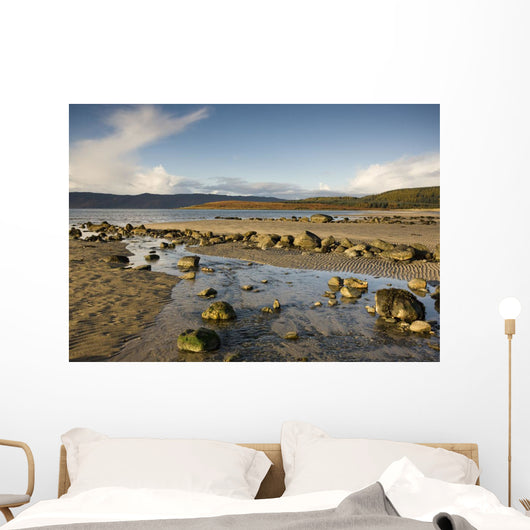 Rocky Beach, Argyll And Bute, Scotland Wall Mural