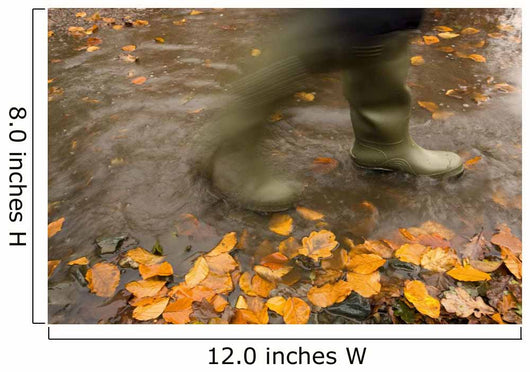 Person In Motion Walks Through Puddle Filled With Autumn Leaves Wall Mural
