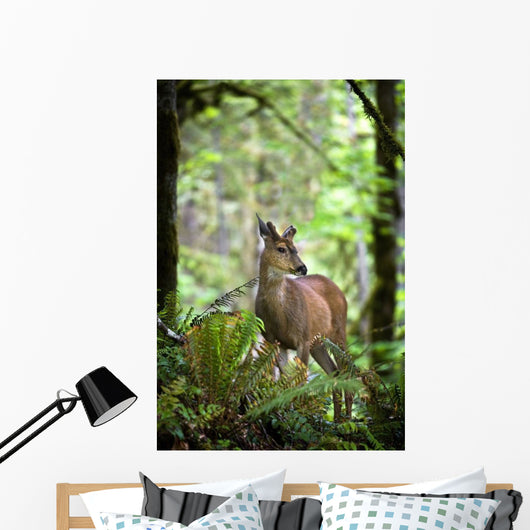 White-Tailed Deer Peering Out Of The Woods Wall Mural