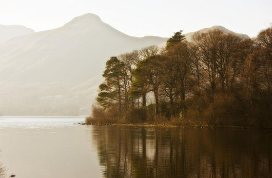 Calm Water With Mountains And Trees Along The Shoreline, England Wall Mural