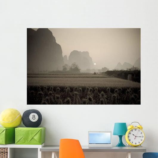 Field In Mountain Area, Toned Image Wall Mural
