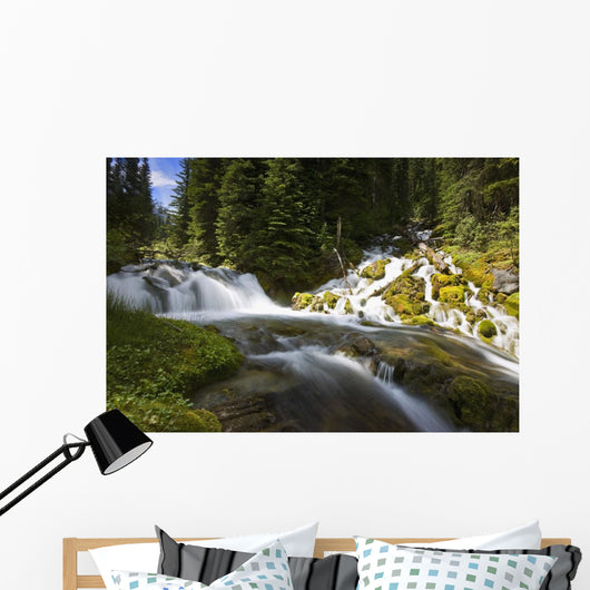 Scenic View Of A Stream Wall Mural