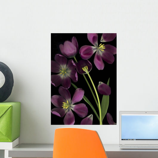 Purple Tulips Wall Mural