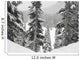 Evergreens At Ski Resort, Whistler, British Columbia, Canada Wall Mural
