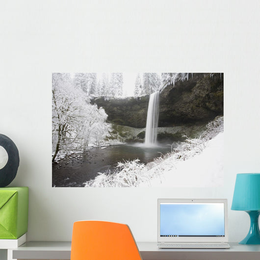 Waterfall In Winter Wall Mural