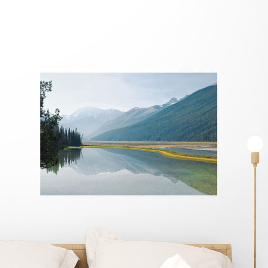 Canadian Rockies Reflected In Beauty Creek Wall Mural