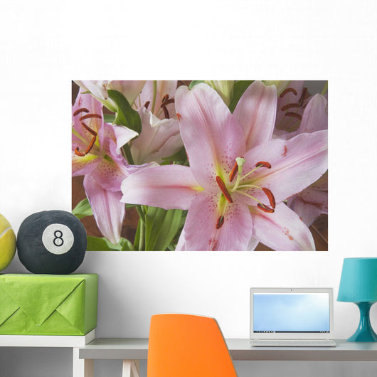 Asiatic Lily Wall Mural