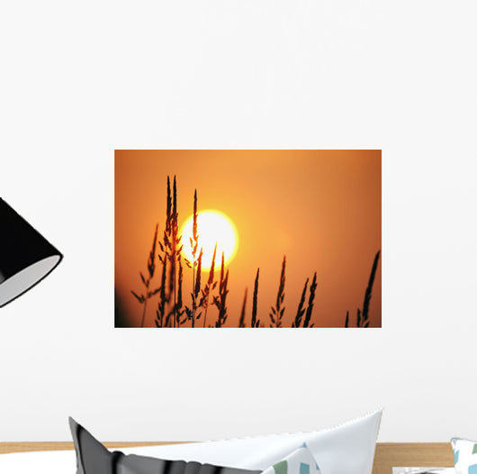 Tall Grass In A Sunset Wall Mural