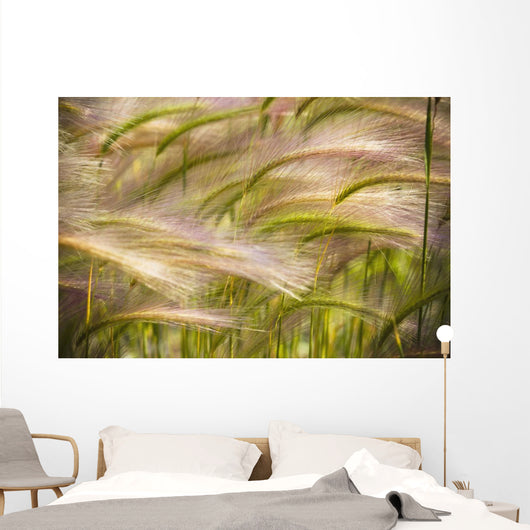 Prairie Grass Blowing In The Wind Wall Mural