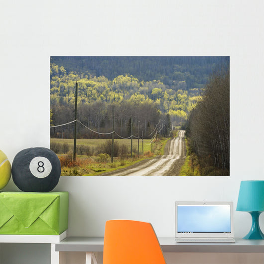 A Country Road With Electrical Wires Running Along It Wall Mural