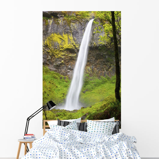 Elowah Falls In Columbia River Gorge National Scenic Area Wall Mural