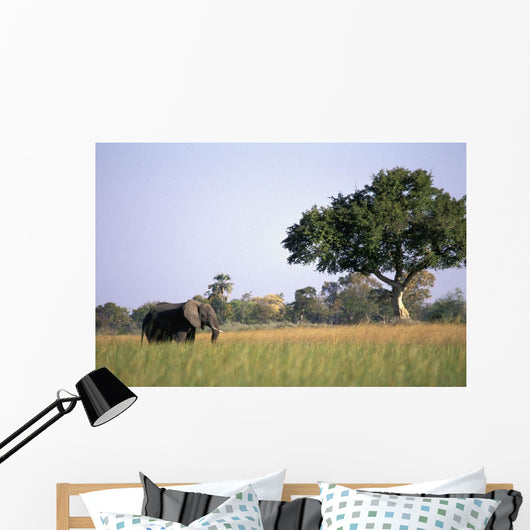 Elephant Grazing In Water Meadows Wall Mural