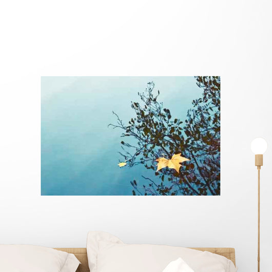 Autumn Leaf Pond Wall Mural