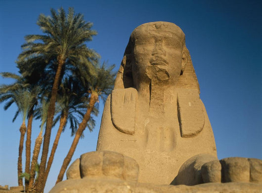 Sphinx Statue In Front Of Date Palms Wall Mural