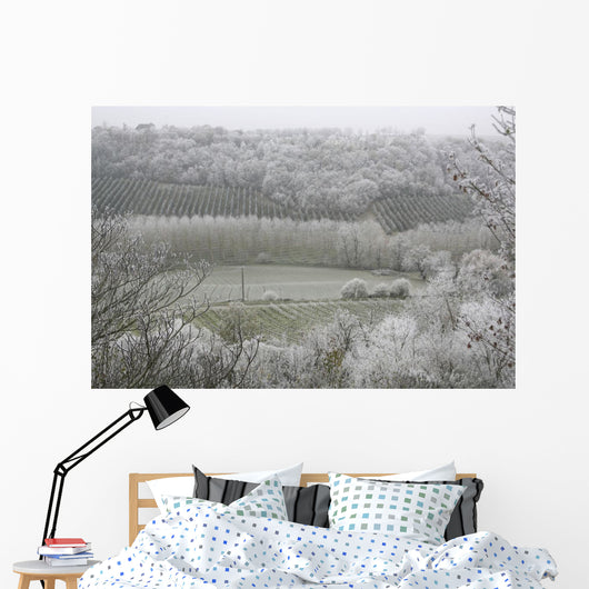 Morning Frost In December At Castelnau-Montratier Wall Mural