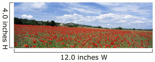 Looking Across Field Of Poppies To Small Village In Provence Wall Mural