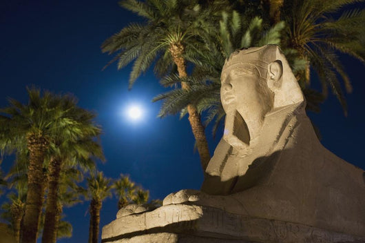 Sphinx And Date Palms With Full Moon Behind Wall Mural
