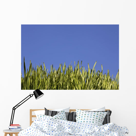 Green Grass Against A Blue Sky Wall Mural