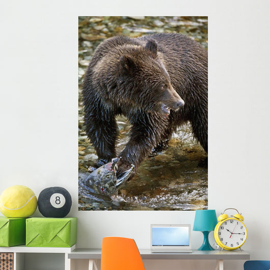 Grizzly Bear Biting Salmon Wall Mural