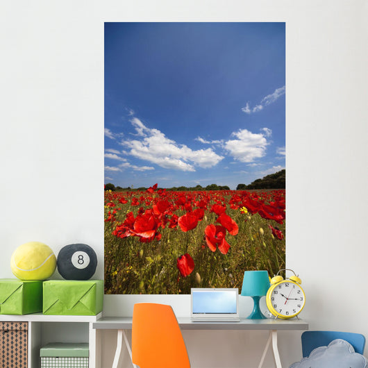Field Full Of Red Flowers Wall Mural