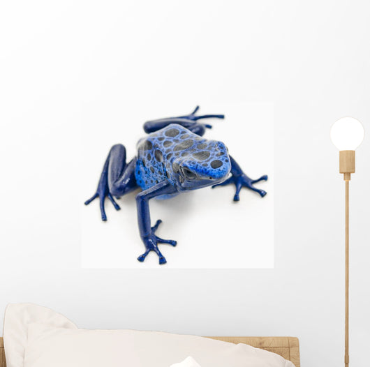 Blue Poison Dart Frog Wall Decal