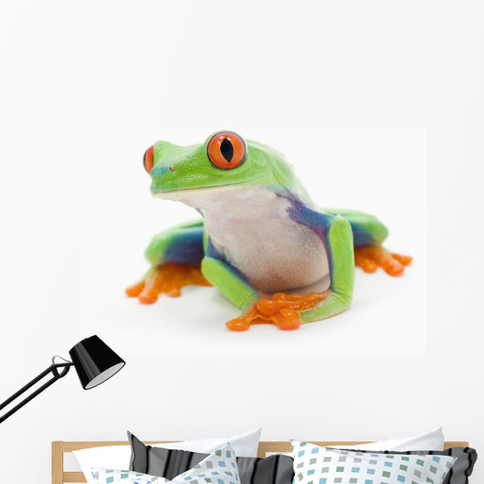 Red-Eyed Treefrog Wall Mural