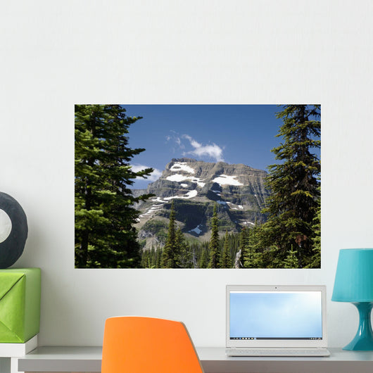 Mountain Peak Framed Between Trees Under A Blue Sky Wall Mural