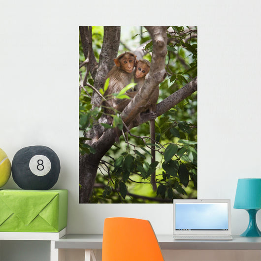 Two Monkeys In A Tree Wall Mural
