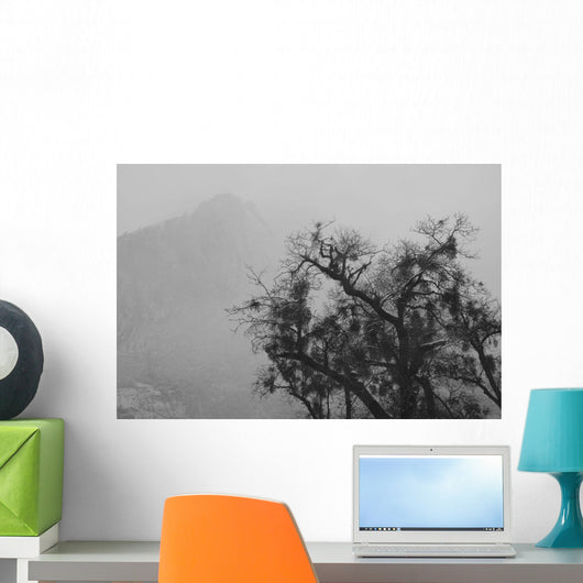 Tree And A Mountain In The Fog In Yosemite Park Wall Mural
