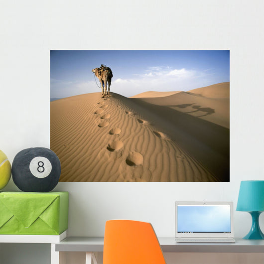 Blue Man Tribe Of Saharan Traders With Camel At Dawn In Dunes Wall Mural