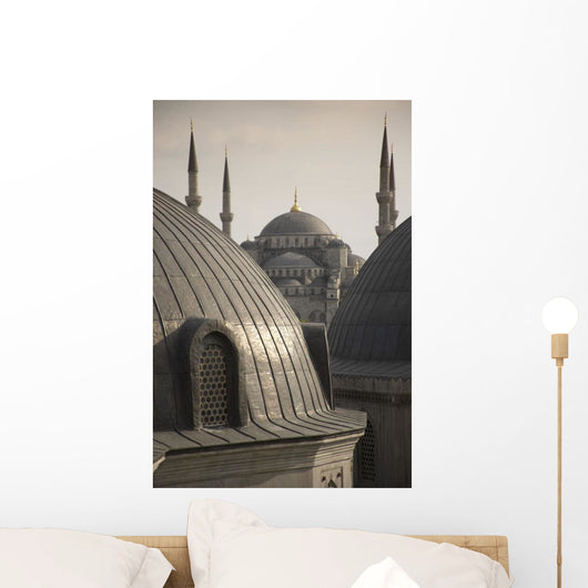 Domes Of The Blue Mosque Wall Mural