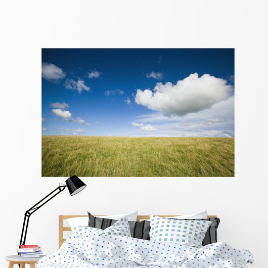 Grassy Field On Hill With Blue Skies And Clouds Wall Mural