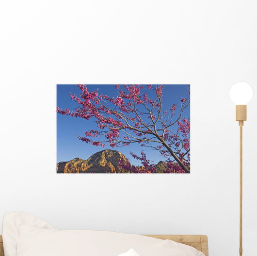A Tree With Pink Blossoms In Red Rock Country Wall Mural