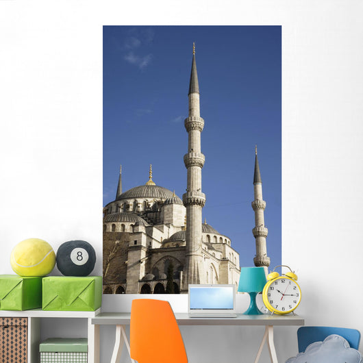 Blue Mosque Or Sultan Ahmet Camii Wall Mural