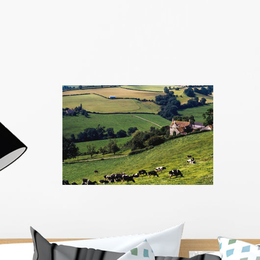 Cows On Hillside Wall Mural