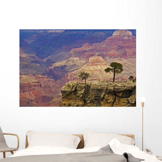 South Rim Of Grand Canyon, Elevated View Wall Mural