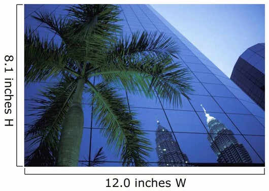 Palm Tree And Reflection Of Petronas Towers In Facade Wall Mural