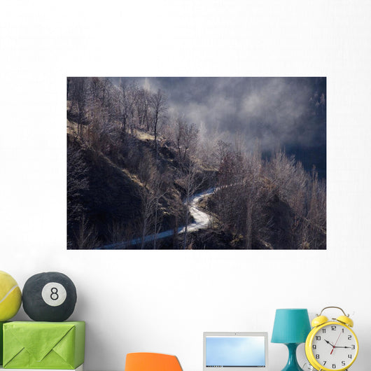 Trees On Hill With Mist Wall Mural
